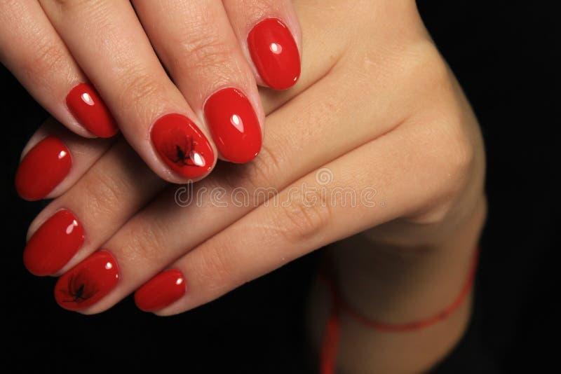Women& x27; s-Hände mit einer stilvollen Maniküre gut stockbild