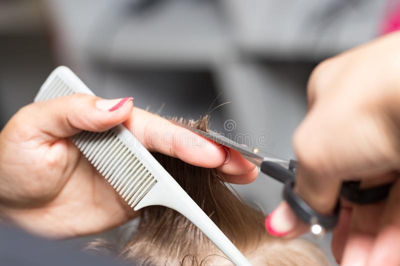 Women`s haircuts in the beauty salon stock images