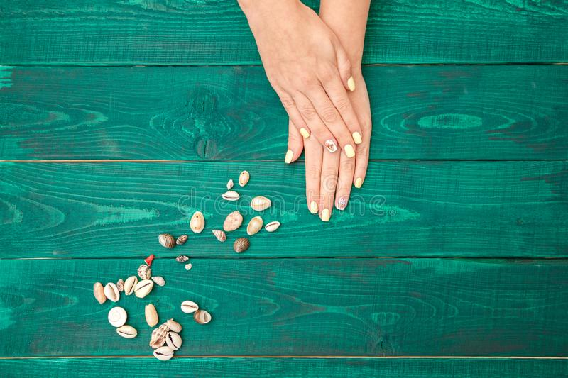 Women`s hands with a beautiful manicure with a summer pattern and shells on a green background. the view from the top royalty free stock image