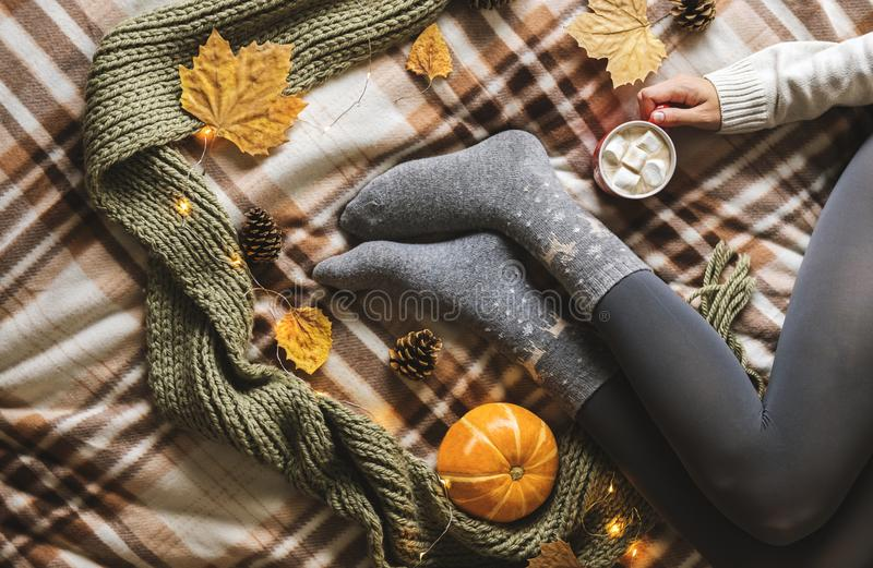 Women`s hands and feet in sweater and woolen cozy gray socks holding cup of hot coffee with marshmallow, sitting on. Plaid with pumpkin, knitted scarf, leaves stock photos