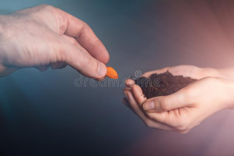 Women`s hands hold the fertile ground in which men`s hands put grain. The concept of IVF, fertility and pregnancy. Close up.  royalty free stock image