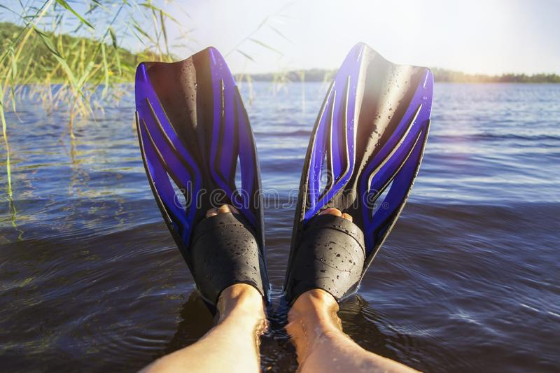 Women`s legs in flippers by the lake on a hot summer day stock images