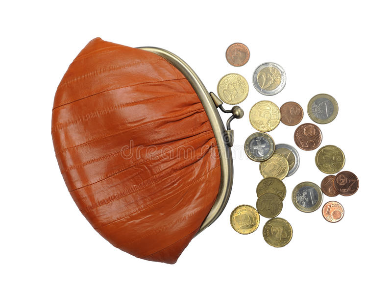 Women's purse eel skin and money royalty free stock photography