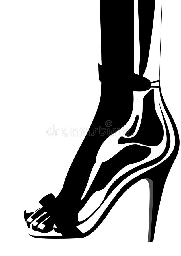 Download Women's Shoes Royalty Free Stock Images - Image: 20785249