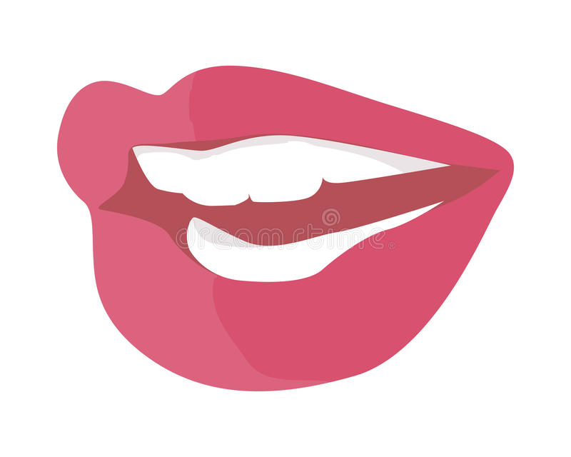 Women s Smile with Shining White Teeth Vector. Women s smile with shining white teeth. Female lips colored with red violet lipstick flat vector illustration royalty free illustration