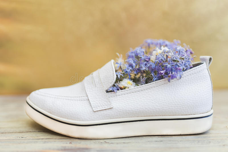 Women x27s white shoes and white and purple flowers inside stock download women x27s white shoes and white and purple flowers inside stock image mightylinksfo