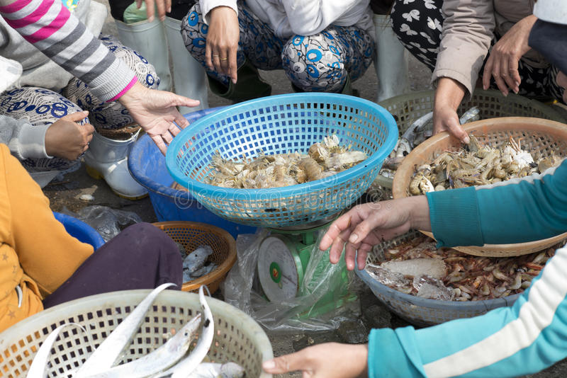 Women selling fish and shrimps at the outskirts of Da Nang royalty free stock photos