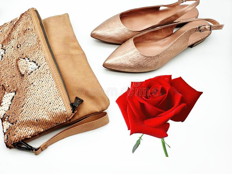 Women shoes and handbag gold stylish elegant luxury accessories roses flowers still life shop girl clothes. Red white gold busines sale stock photography