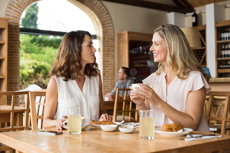 Women talking over coffee. Two beautiful mature women holding cup of coffee and talking to each other in a cafeteria. Senior women in conversation while having stock image