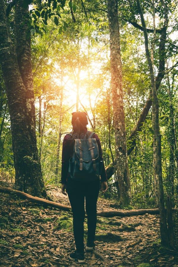 Women tourists walk in the forest. Women tourists walk in the forest to nature tours stock photography