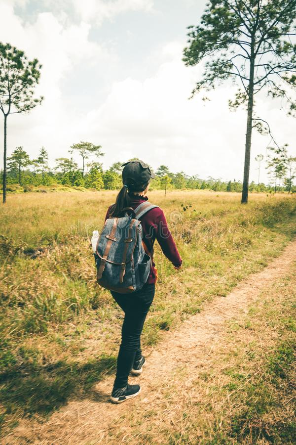 Women tourists walk in the forest. Women tourists walk in the forest to nature tours royalty free stock photos