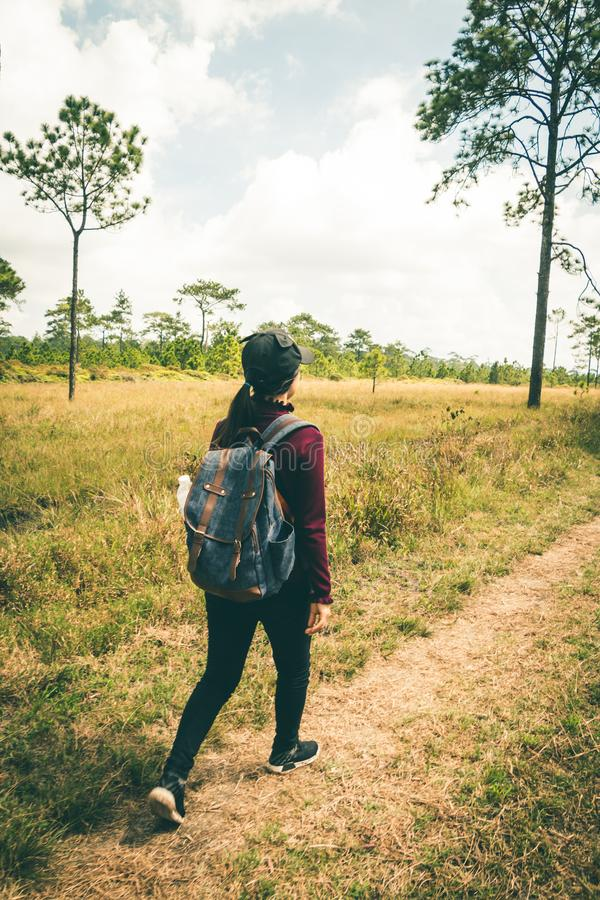 Women tourists walk in the forest. Women tourists walk in the forest to nature tours royalty free stock photography