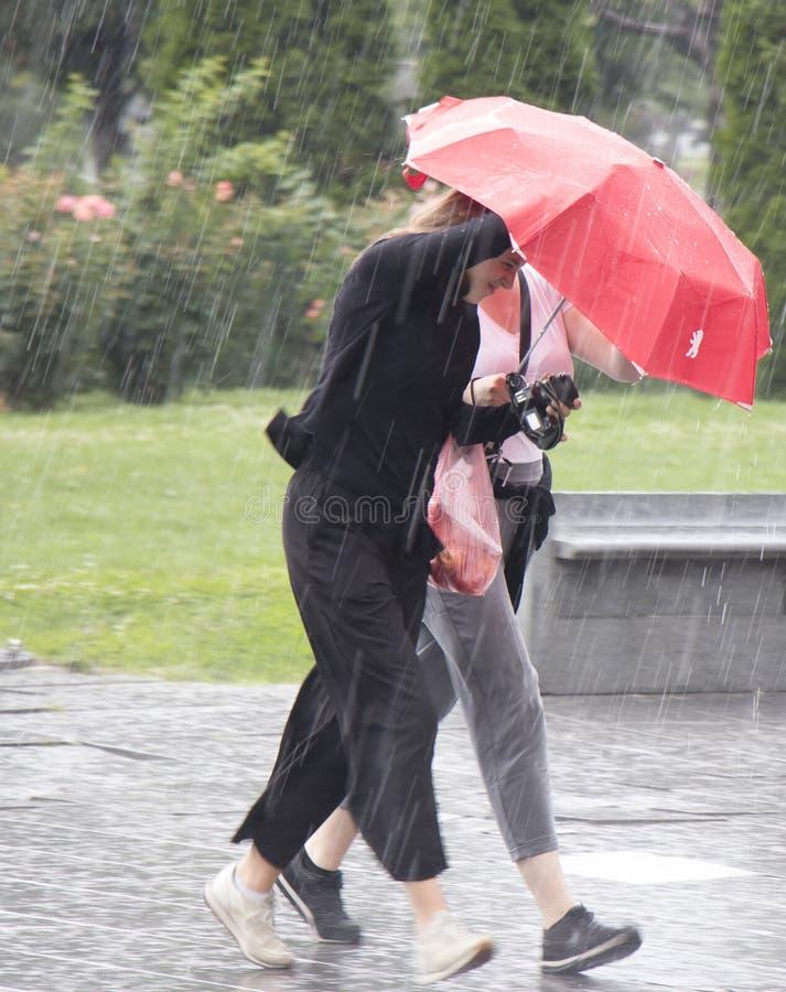 Women under umbrella during sudden spring shower royalty free stock photo