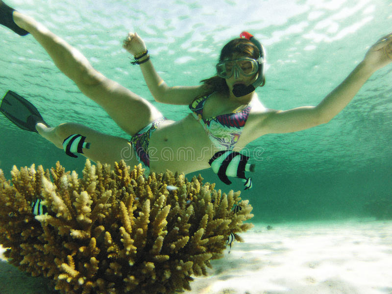 Download Women underwater stock image. Image of fantasy, looking - 27693949