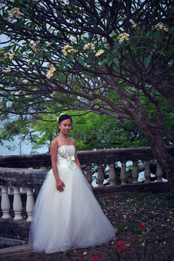 Download Women in white dress bride stock photo. Image of door - 23861722