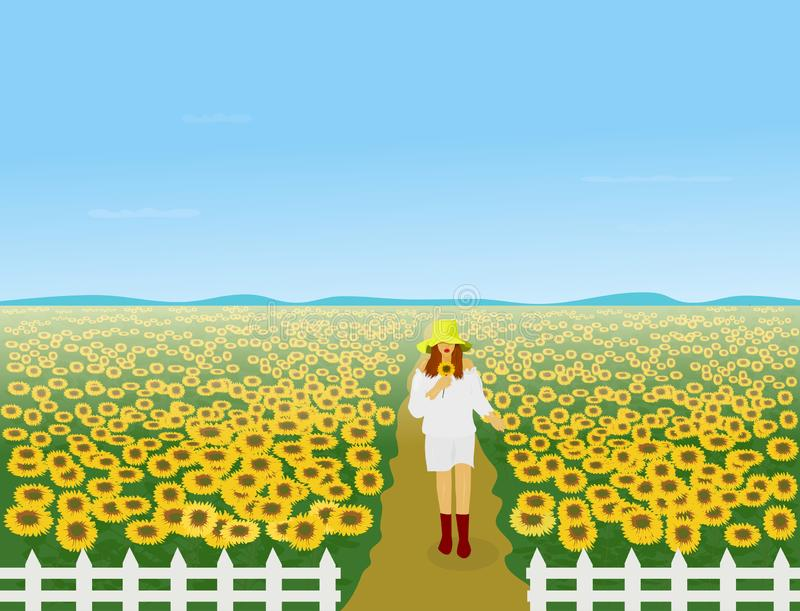 Women in a white dress wearing a hat are walking in the sunflower field. There is a white fence around and there is a mountain in the background royalty free illustration