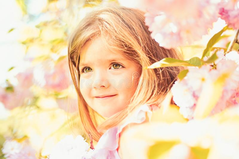 Womens day. face and skincare. allergy to flowers. Summer girl fashion. Happy childhood. Springtime. weather forecast. Small child. Natural beauty. Childrens royalty free stock photography