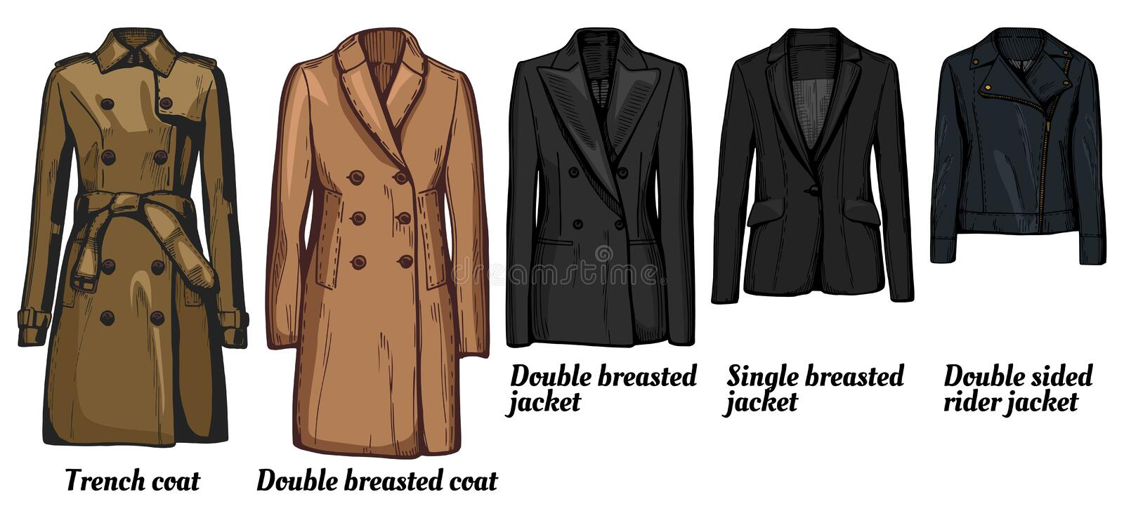 Womens jackets types set. Vector illustration of womens jackets types set. Trench coat, classic double breasted wool cashmere coat, double and single breasted vector illustration