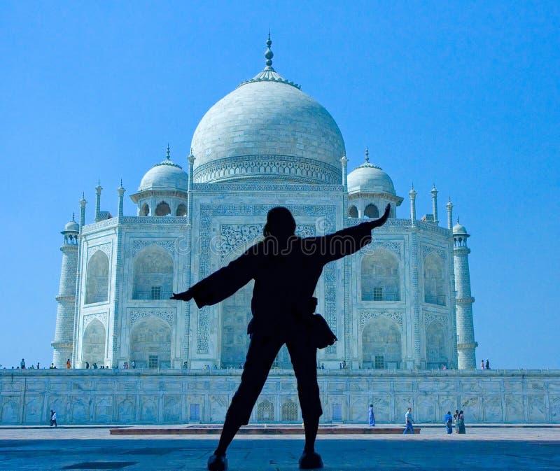 Wonder Taj Mahal van de wereld royalty-vrije stock fotografie