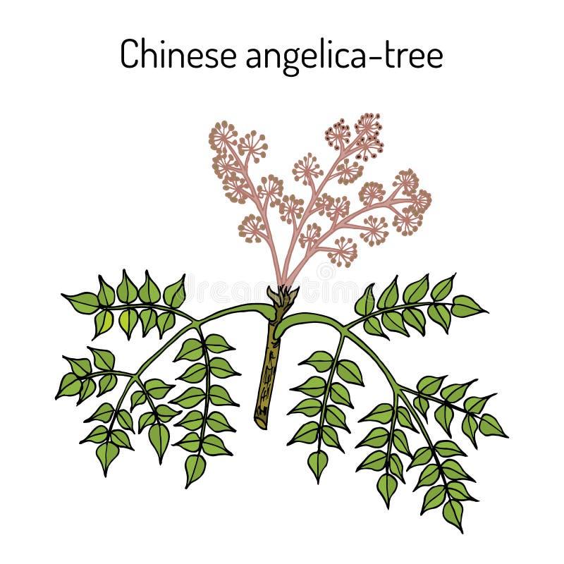 Wonderberry o retroflexum sunberry de la solan?cea, planta medicinal stock de ilustración