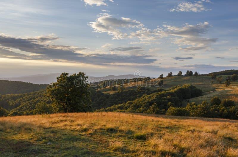 Wonderful autumn hillside in Transylvania stock photography