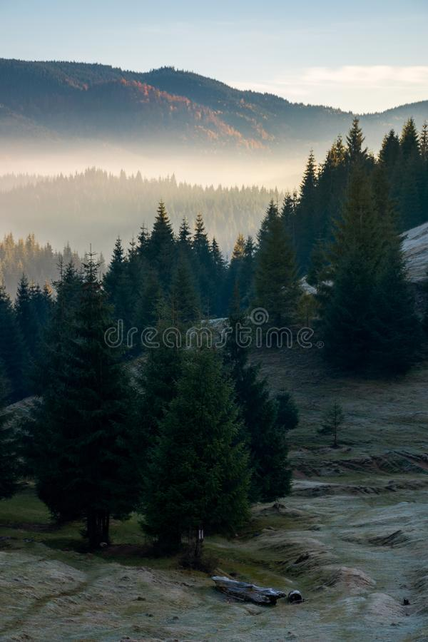 Wonderful autumn weather with fog in valley. Mysterious scenery in mountains. wonderful autumn weather with fog in distant valley stock image