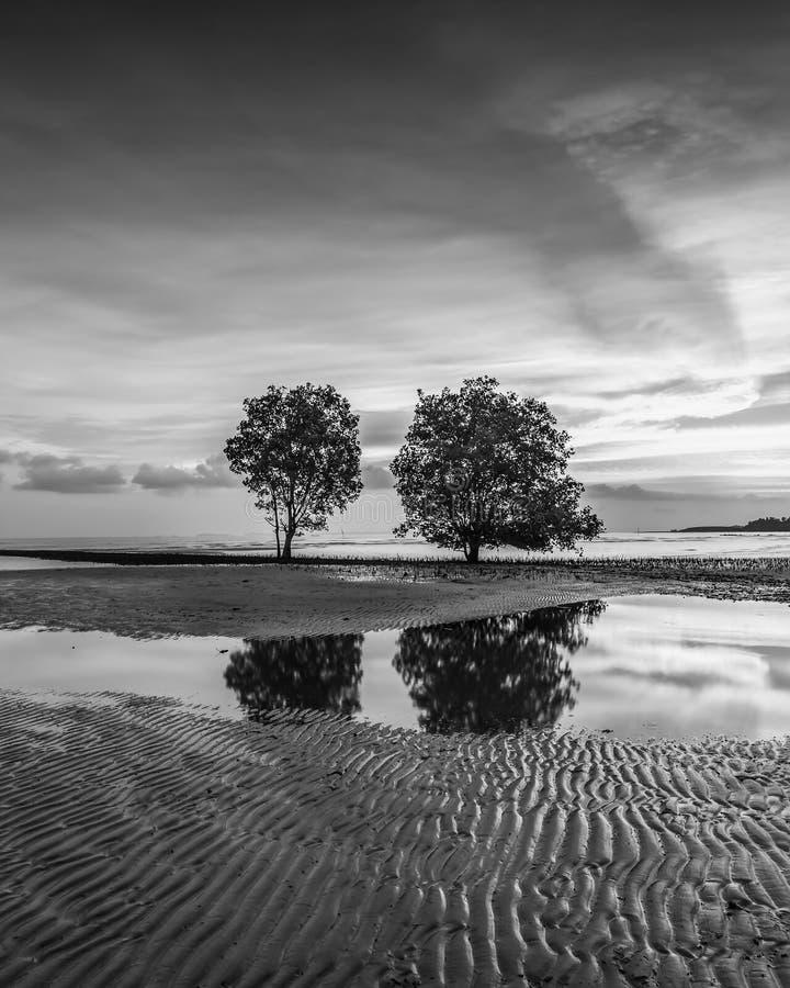 BlackWhite Photos at Batam Bintan Island Indonesia. Wonderful BlackWhite Photos at Batam Bintan Island Indonesia stock image