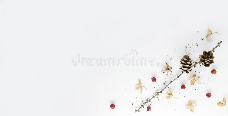 These wonderful and bright photos gives to your website or blog a great atmosphere of magical Christmas. Buy without hesitation! I recommend, not regret it! royalty free stock photos