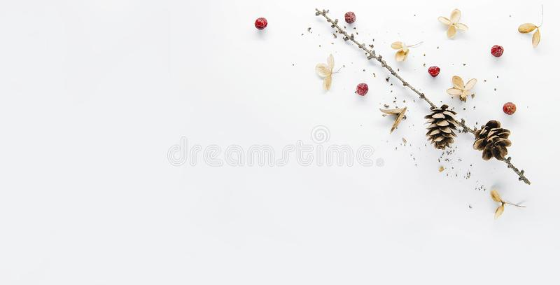 These wonderful and bright photos gives to your website or blog a great atmosphere of magical Christmas. Buy without hesitation! I recommend, not regret it! stock photos