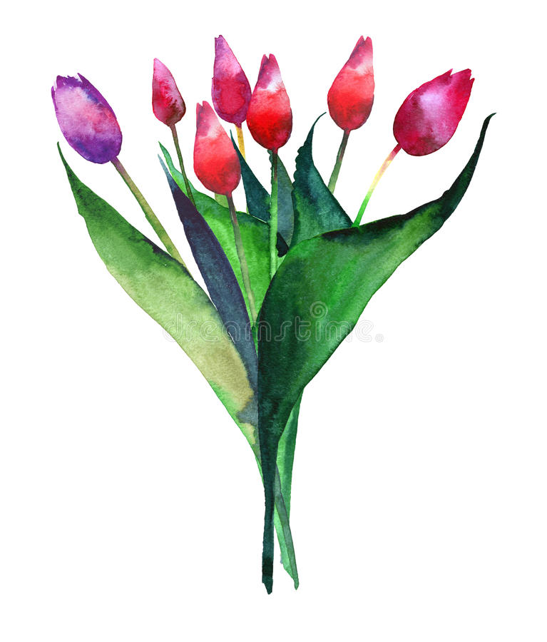 Wonderful bright refined bouquet of tulips red pink and purple flowers watercolor hand sketch vector illustration