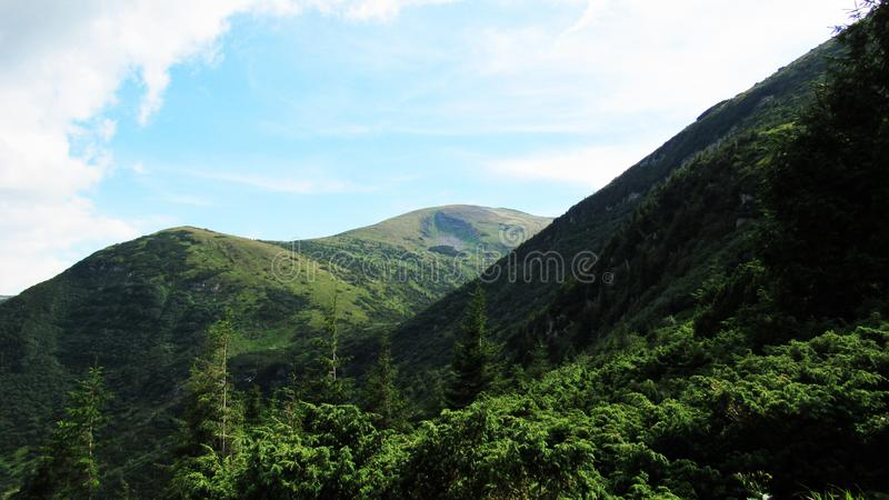 Wonderful Carpathian mountains. you can use it for your presentation, ad, advertisement, flyer or banner stock image