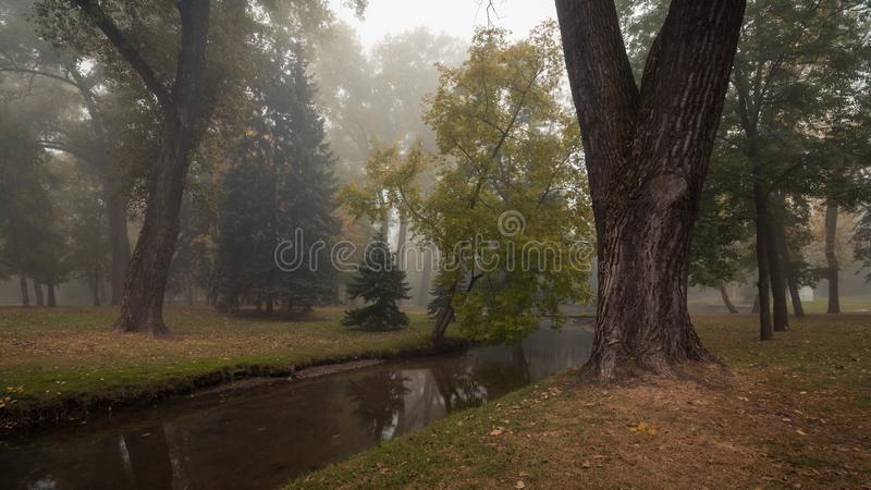 Wonderful clean autumn city park with trees along a narrow stream and a light morning fog in the background. Wonderful calm view of a clean autumn city public stock photos