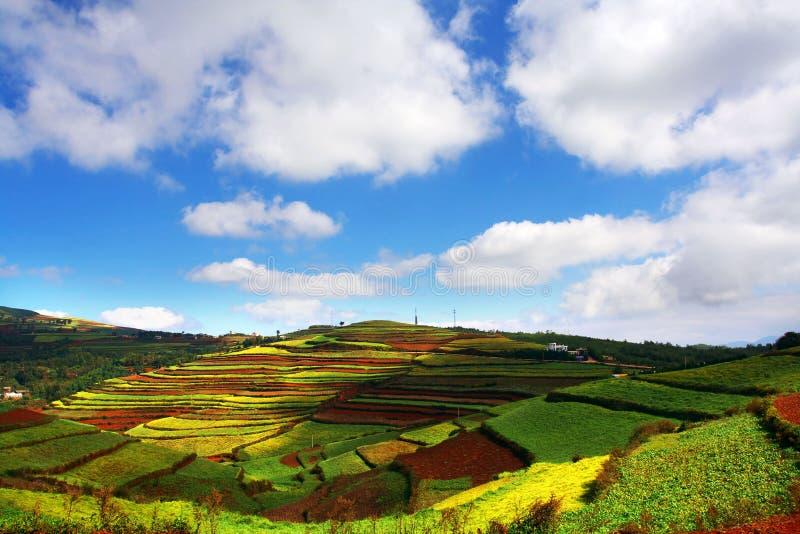 Wonderful Hill Stock Photo