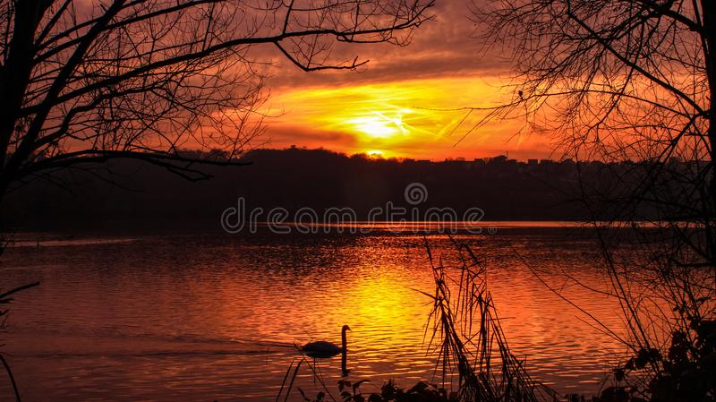 Beautiful sunset in the countryside in an orange sky royalty free stock photo