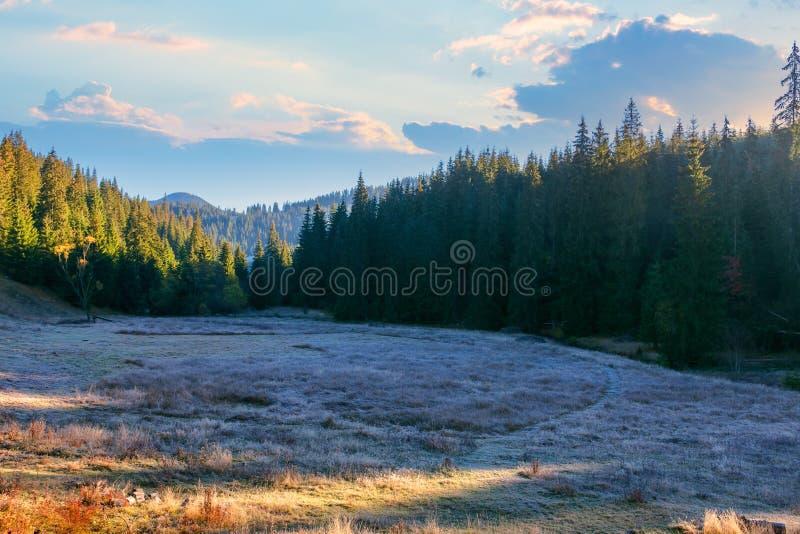 Wonderful mountain landscape at sunrise in autumn royalty free stock photo