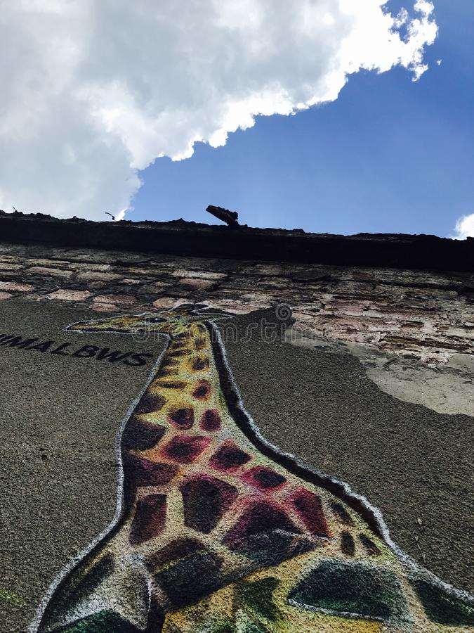 A wonderful mural of a giraffe in Odessa, Ukraine - EUROPE royalty free stock photography