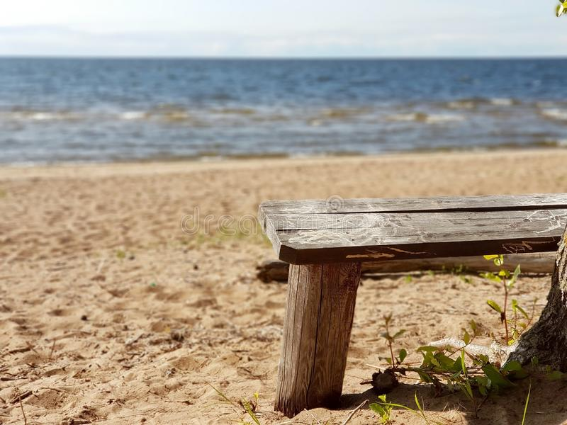 A wonderful place to stay. Wooden gray bench on a sandy beach near a tree overlooking the sea. Sunny day. Gulf of Finland royalty free stock photos