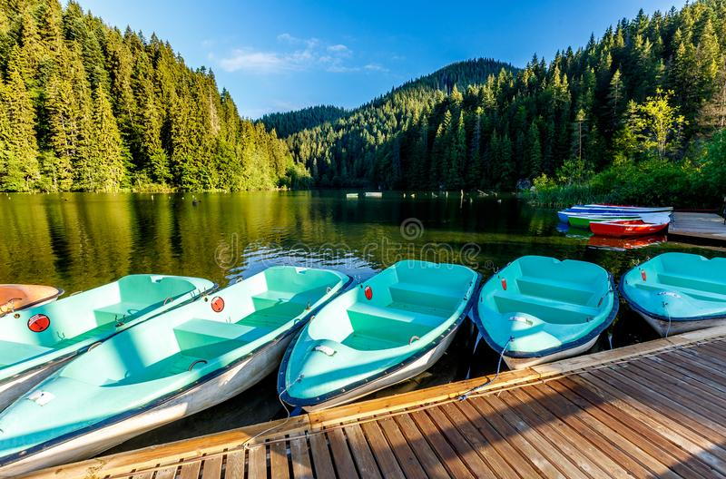 Wonderful summer morning. majestic mountain lake Lacul Rosu the Red Lake or Killer Lake. location. Evropa. Eastern Carpathian. Rom stock photography