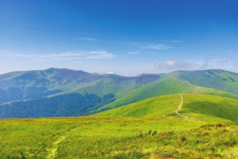 Wonderful summer mountain landscape royalty free stock images