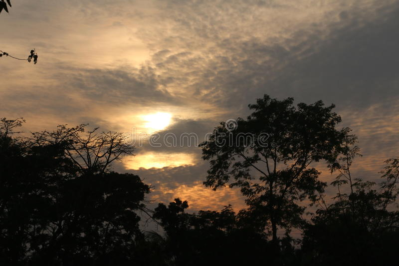 Wonderful sun effect on a natural picture royalty free stock photography