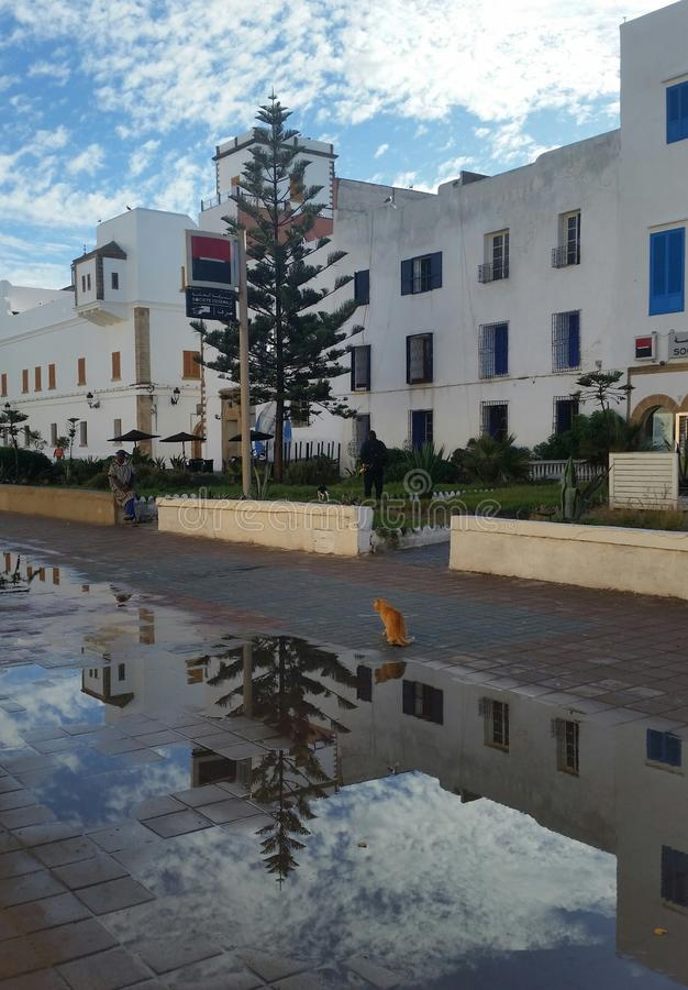 A wonderful sunny day after rain in Essaouira royalty free stock image