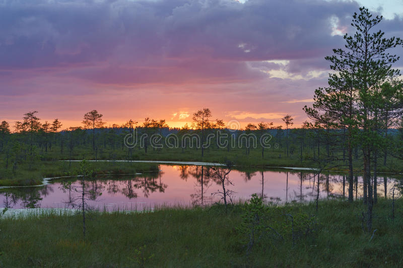 Wonderful sunset with colorful clouds over Suru Suursoo bog, Est royalty free stock photo