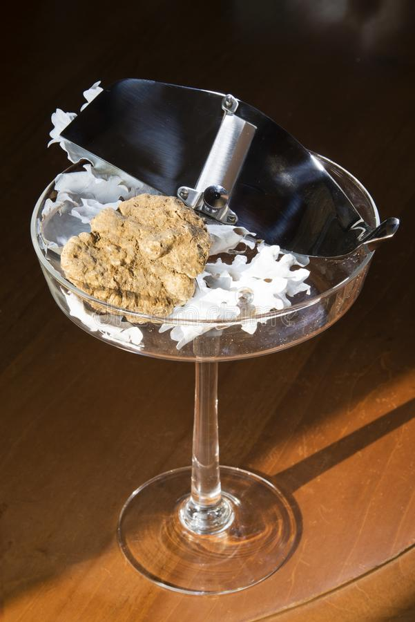 Wonderful white truffle on a glass cup with pedestal, with truffles cut in silver steel. On wooden table, from Langhe Alba in Piedmont Italy royalty free stock photos