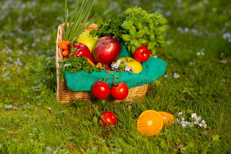 A wonderful wicker basket with vegetables and fruits on the background of green grass royalty free stock image