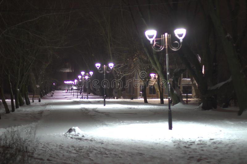 Wonderful winter evening landscape. Illuminated alley in the park.  royalty free stock photos