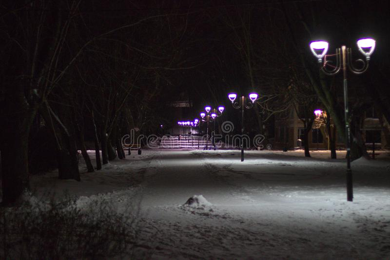 Wonderful winter evening landscape. Illuminated alley in the park.  royalty free stock image