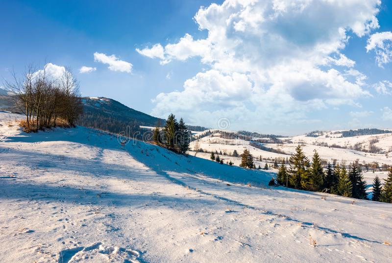 Wonderful winter landscape in mountains stock photography