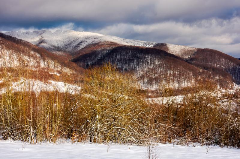 Wonderful winter landscape in mountains. Sunny day with cloudy sky in the distance above the ridge royalty free stock images