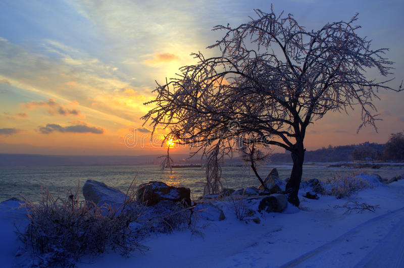 Winter sunset shore royalty free stock photo
