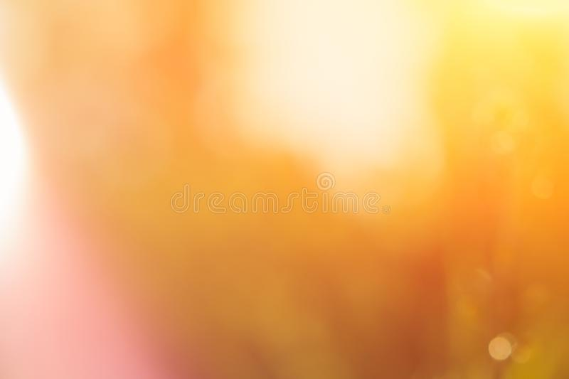 Wonderful yellow blurred background with sunlight. Bokeh.  royalty free stock image